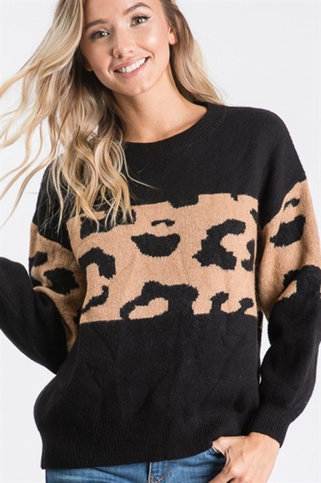 Picture of Leopard Striped Sweater